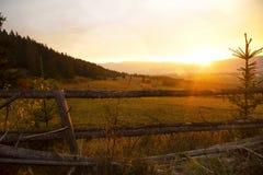 在草甸的风景秋天日落 免版税库存图片