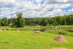 在草甸的Haycocks,俄罗斯 免版税库存图片