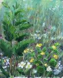在草甸花的,油画的绿色灌木 库存照片