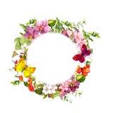 在草甸花的蝴蝶 圆的花卉花圈 水彩 免版税库存图片