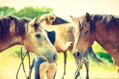 在草甸,妇女的两匹马在背景中 免版税图库摄影
