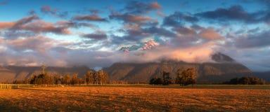 在草甸uder的日落福克斯冰川/Te Moeka o Tuawe 免版税库存照片