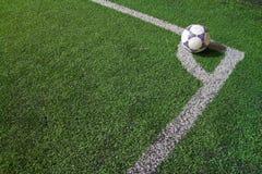 在草的一个球 免版税库存照片