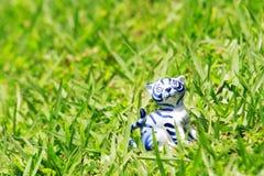 在草的一只小的陶瓷猫 库存照片