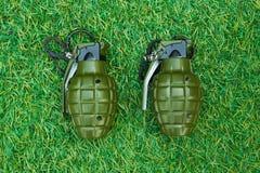 在草的一颗手榴弹 免版税库存照片