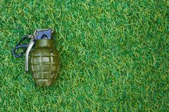 在草的一颗手榴弹 免版税图库摄影