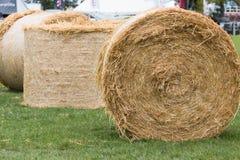 在草的三干草捆 免版税库存照片