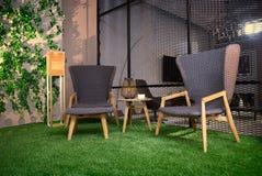 在草的两把舒适的椅子 库存照片