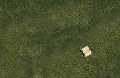 在草的书 图库摄影