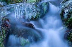 在草的冰柱由河在冬天 免版税库存照片
