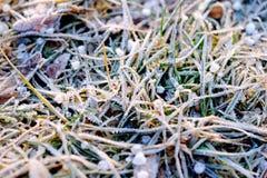在草的冰雹 免版税库存图片