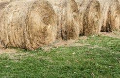 在草的几大圆的干草捆 免版税库存照片