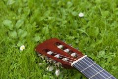 在草的吉他 免版税库存照片