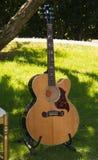在草的吉他 图库摄影