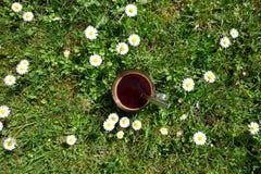 在草的咖啡杯 库存图片