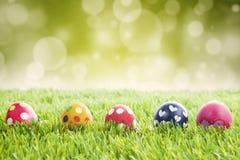 在草的复活节彩蛋有bokeh背景 免版税库存照片