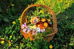 在草的复活节篮子用蒲公英 库存照片