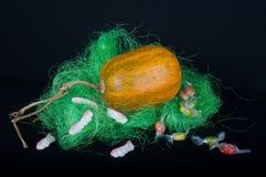 在草的大橙色南瓜与甜点 库存图片