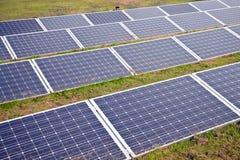 在草的太阳电池板 库存图片