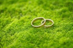 在草的婚戒 免版税库存照片