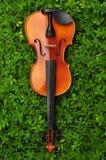 在草的小提琴 库存照片