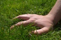 在草的手 免版税库存照片