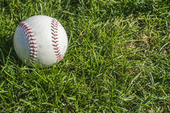在草的拖着脚走路的棒球 库存图片