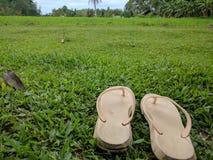 在草的拖鞋 库存照片