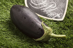 在草的新鲜的茄子与黑标志 库存图片