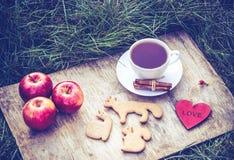 在草的春天野餐用自创曲奇饼 浪漫概念 茶在木盘子的 库存照片