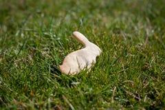 在草的曲奇饼兔子 免版税图库摄影