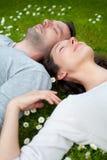 在草的有吸引力的夫妇在公园 库存图片