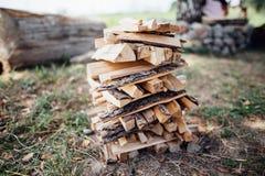在草的木柴 免版税库存图片
