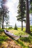 在草的海皮船 图库摄影