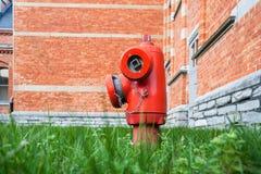 在草的消防栓 免版税库存照片