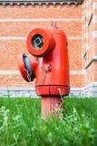 在草的消防栓 图库摄影