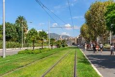 在草的电车线路轨在尼斯 免版税图库摄影