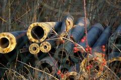 在草的管子 免版税库存照片