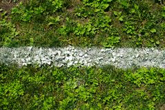 在草的粉笔线标号 图库摄影