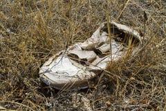 在草的腐朽的鞋子 免版税库存图片
