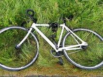 在草的自行车 免版税图库摄影
