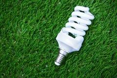 在草的节能电灯泡 库存图片