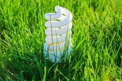 在草的节能电灯泡 免版税库存图片