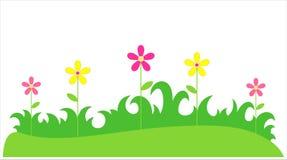 在草的花 免版税图库摄影