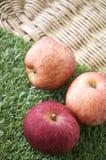 在草的苹果 库存照片