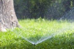在草的草坪水喷水隆头喷洒的水在庭院里在一个热的夏日 自动浇灌的草坪 从事园艺和环境 免版税图库摄影