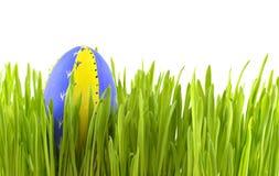 在草的蓝色复活节彩蛋 库存图片