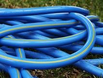 在草的蓝色橡皮泳圈 库存图片