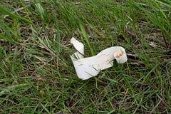 在草的被撕毁的白桦树皮 免版税库存图片