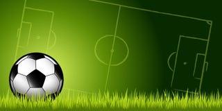 在草的足球 免版税库存照片